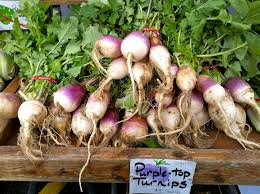 Turnip Truck | Commoncorediva Willysnax Flickr Donald Rumsfeld Quote I Suppose The Implication Of That Is Hit Gas Truck Baked Beans Blowout Richard Hall Humor Print Political Moderates Are Lying Quillette Ligcoinn2016 Turnip Productions Pinterest Connecticut Food Farm Magazine Fall 2018 Volume 14 By Mmoncorediva No One Fell Off Turnip Truck Glade Church Joyful Public Speaking From Fear To Joy July Bob Dolezal On Twitter At Least Youre Honest Warning Poor Listener Tshirt