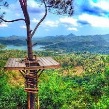 Wisata Alam Kalibiru Pesona Eksotis Bukit Menoreh