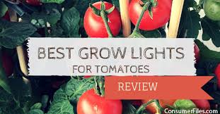 best grow lights for tomatoes review 2018 consumer files