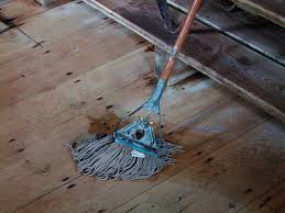 Steam Cleaning Old Wood Floors by Free Pioneer Images Page 2