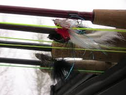 Sink Tip Fly Line Attachment by Early Spring Streamer Fishing Tactics Troutster Com