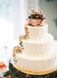 Rustic Purple Orange Virginia Wedding Via TheELD