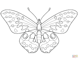 Butterfly Coloring Pages New Color