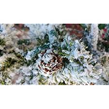 Snow Flocking For Christmas Trees by Amazon Com 5 Pounds Of The Original Self Adhesive Professional