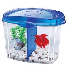 Petco Flower Ball Aquarium Decor by Hanging Fish Tank Idolza