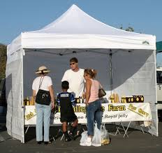 10 x 10 Classic mercial Grade Canopy Value Package 4 Sidewalls