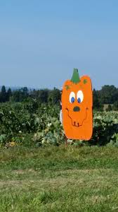 Best Pumpkin Farms In Maryland by Jumbo U0027s Pumpkin Patch In Maryland Celebrates 20 Years This Fall L