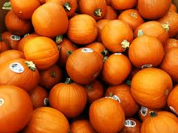 Varieties Of Pie Pumpkins by Decorating Eating And Composting For A Sustainable Halloween