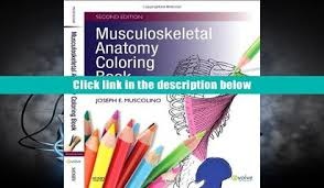 FREE PDF DONWLOAD Musculoskeletal Anatomy Coloring Book 2e DOWNLOAD ONLINE