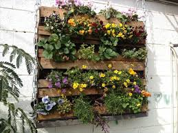 Brilliant Wood Pallet Vertical Garden Pallets Designs