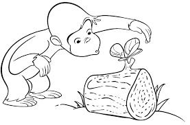 Monkey Coloring Sheet