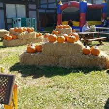 Pumpkin Patch San Jose 2015 by Pomeroy Pumpkin Patch 31 Photos Pumpkin Patches 207 Skyline