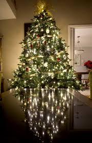 Balsam Hill Premium Artificial Christmas Trees by Guides U0026 Ideas Balsam Hill Christmas Trees For Sale Artificial