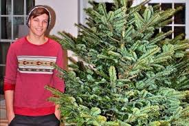 Which Christmas Tree Smells The Best Uk by How To Pick The Perfect Christmas Tree And Top Tips On How To
