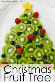 Kinds Of Christmas Trees by Best 25 Christmas Party Snacks Ideas On Pinterest Kids