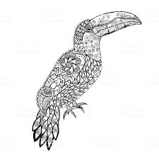 21 Toucan Coloring Page Printable FREE COLORING PAGES