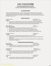 Resume Templates Volunteer Work New College Application Examples Awesome Painter 0d