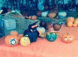Ramona Pumpkin Patch by Pumpkin Patch Local Event C L Smith Hay And Grain San