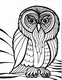 Cool Owl Coloring Page