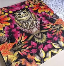 Inspiration Color Secretgarden Painting Design Owl Secret Garden