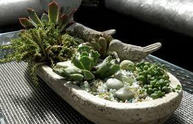 Breathe easy with indoor plants