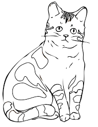 Dog And Cat Coloring Pages Online Halloween To Print Book Pictures Cats For Mindfulness