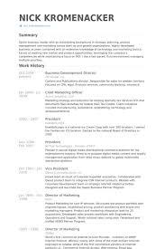 Business Development Director Resume Example