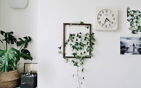 pflanzen in allen räumen schaff dir dein paradies ikea