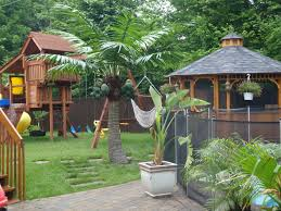 Artificial Palm Tree And Cocotree LIKE REAL PALM TREE Front Yard Landscaping With Palm Trees Faba Amys Office Photo Page Hgtv Design Ideas Backyard Designs Wood Above Concrete Wall And Outdoor Garden Exciting Tropical Pools Small Green Grasses Maintenance Backyards Cozy Plant Of The Week Florida Cstruction Landscape Palm Trees In Landscape Bing Images Horticulturejardinage Tree Types And Pictures From Of Houston Planting Sylvester Date Our Red Ostelinda Southern California History Species Guide Install