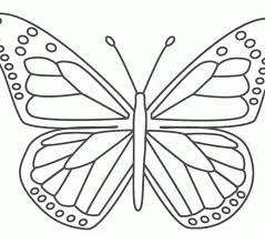 Seasonal Colouring Pages Free Butterfly