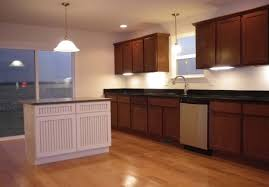 Seagull Ambiance Linear Under Cabinet Lighting by Seagull Led Tape Cabinet Lighting Great Seagull Ambiance Under