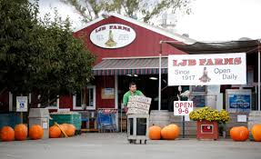 Best Pumpkin Patch In San Fernando Valley by Silicon Valley Farms South Of San Jose You U0027ll Find The Fruit