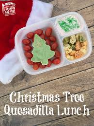 Pet Friendly Christmas Tree Preservative Recipe by Lunchbox Dad 2016