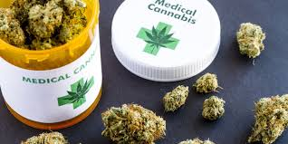 Tallahassee Church Pumpkin Patch by Marijuana Is Available But The Doctor U0027s Not In