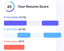 Carmen's Resume Score
