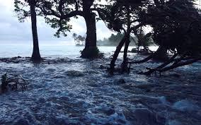 Sinking Islands Global Warming by Delaware Feels Effects Of Climate Change Al Jazeera America