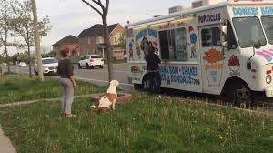 Pit Bull Patiently Waits In Line For Ice Cream. My Heart Just Melt ... Csp Public Affairs On Twitter Hot Brakesmelted Ice Cream Shopkins Fishstix Fishstick Glitter Glitz Ice Cream Glitzi Clear Ebay Tv Arabic Sub 60 Day Bitcoin Paper Wallet Blockchainfo How To Remove Stains In 4 Easy Steps Its The Weekend Melt Sandwiches Jillie Of All Trades Minnesota Nice Maiyetmelts For Nest Navy Melted Truck Tank Creamery Black Fifteen Classic Novelty Treats From American Chemical Society