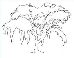 Willow Tree Branches Drawing