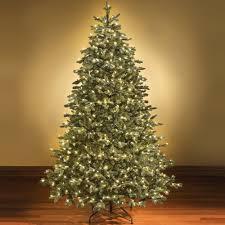 Pre Lit Christmas Trees Walmart Canada by Amazon Com Holiday Essence 60 Led Mini Lights Cool White