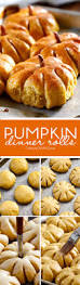 Porcupine Eating Pumpkin And Talking by 17 Best Images About Thanksgiving Ideas On Pinterest Pot Pies
