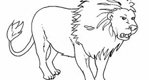 Wild Animals Coloring Pages Intended For Encourage