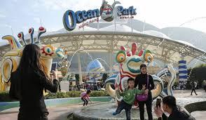 Halloween 5 Castellano Online by Ocean Park Closes Halloween Attraction After Man Found Dead Inside