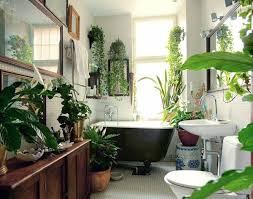 wohnideen grüne zimmerpflanzen im badezimmer badezimmer