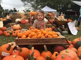 Pumpkin Patch Columbus Ga by Best Georgia Fall Festivals For Shopping