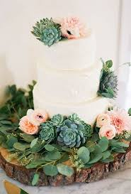 Succulents On A Wedding Cake I Would Have Said No But Changed My
