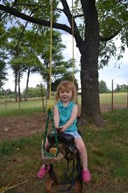 Salli Saddle Chair Ebay by The 25 Best Saddle Swing Ideas On Pinterest Country Playground