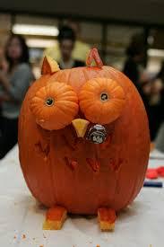 Cute Halloween Carved Pumpkins by Cute Little Pumpkin Owl Halloween Decorations Pinterest