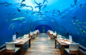 100 Conrad Maldives Underwater Dine At The Phenomenal Ithaa The Restaurant