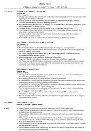 100 Agile Resume Project Manager Samples Velvet Jobs