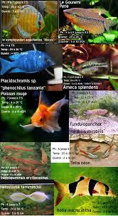 ph aquarium eau douce liste poisson aquarium eau douce poisson naturel